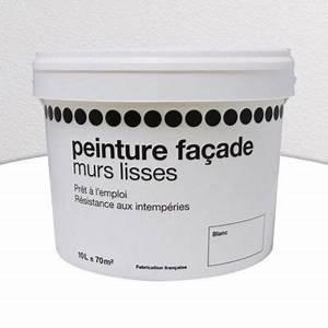 Castorama Peinture Exterieure : peinture fa ade acrylique blanc 10l castorama ~ Premium-room.com Idées de Décoration
