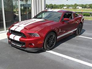2014 Ford Mustang GT500 for sale #86865 | MCG