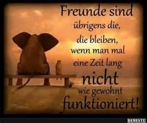 sprüche freundschaft lustig 25 best ideas about beste freunde sprüche on best friends sprüche freundschaft and