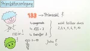 Kgv Berechnen Mit Primfaktorzerlegung : was sind primzahlen einfach erkl rt mit bungen sofatutor ~ Themetempest.com Abrechnung
