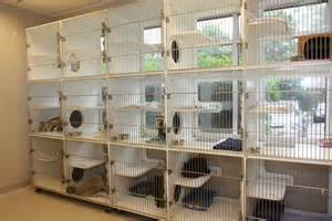 cat boarding in germantown md pet boarding call now