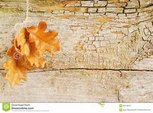 Vintage Autumn Background Stock Images - Image: 35510644