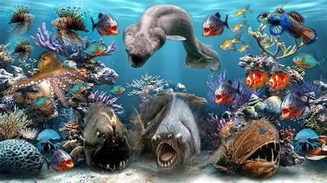 Sea Animal Wallpaper - sea creatures wallpaper 53 images