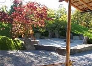 Japanischer Ahorn Im Kübel : ahornbaum ahorn acer artenliste b ume f r g rten ~ Michelbontemps.com Haus und Dekorationen
