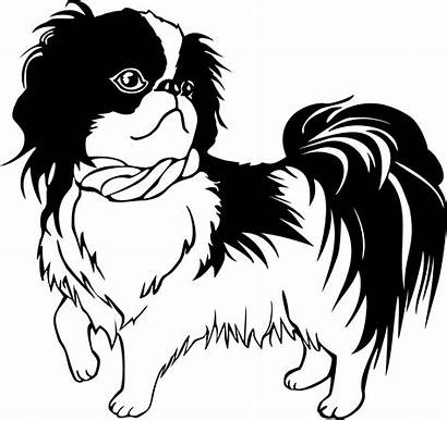 Shih Tzu Dog Clipart Chin Line Japanese