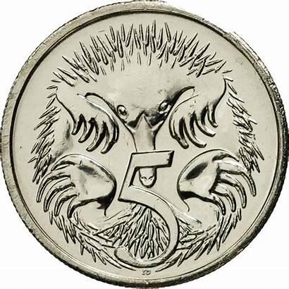 Australia 2005 Coin Cents Five Reverse Inscription