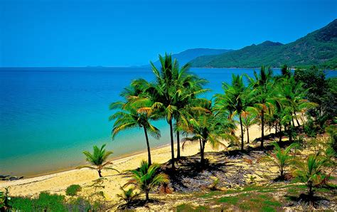 australia tourism bureau cairns australia travel guide tourist destinations