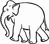 Elephant Coloring Pages Creative Young Printable Wildlife Animals Via sketch template