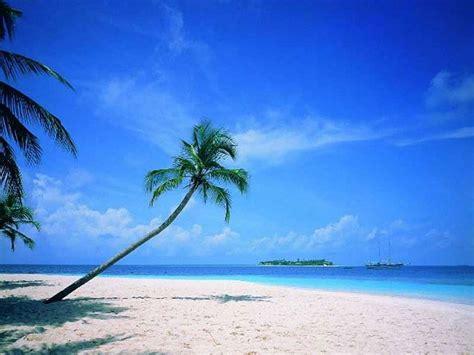 Beach Scene Desktop Backgrounds Wallpaper  Wallpapers And