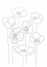 Best poppy flower drawing ideas and images on bing find what you simple poppy flower drawing mightylinksfo