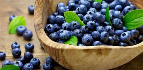 Boronicat janë ushqim i përkryer   Mjeksia Islame