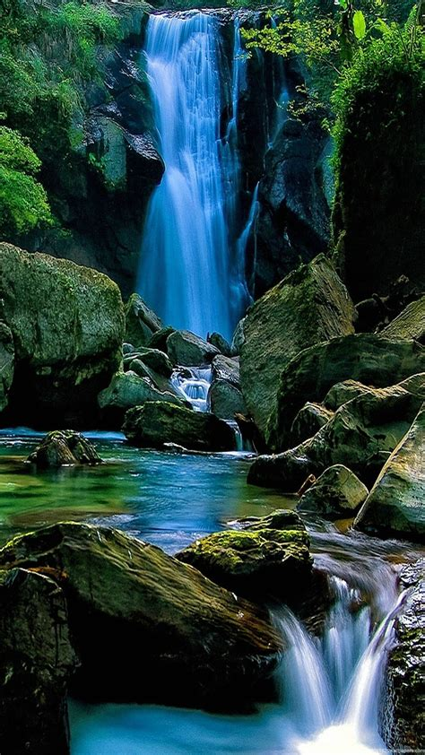 Hd Wallpapers 1080p Nature Animated - nature wallpapers hd mobile 61 wallpapers hd wallpapers