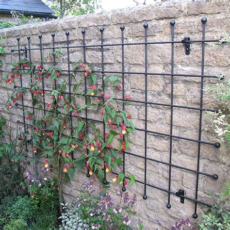best 25 metal trellis ideas on trellis metal