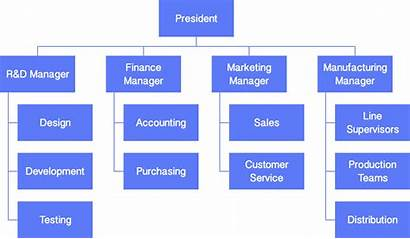 Organizational Structure Functional Chart Software Organization Example