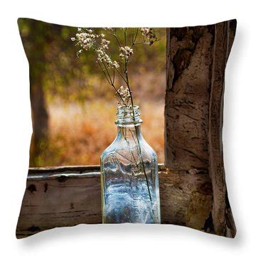 Window Sill Pillow by Bottle On Window Sill Photograph By Norma Warden
