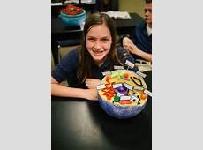 7th Grade Cell Project Brook Hill School Tyler, TX