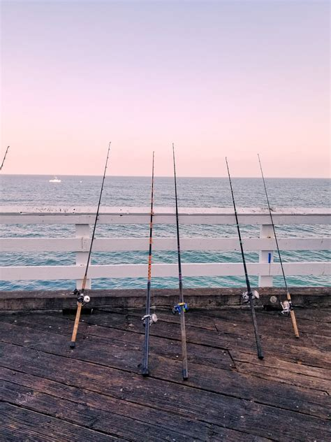 type  fishing      freshwater