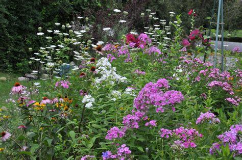 Cottage Garten Pflanzen by Drought Tolerant Flowers Drought Tolerant Garden