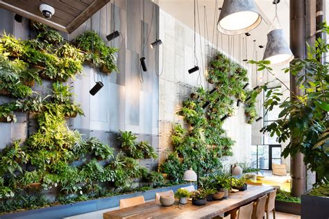 Ideas Green Walls by Living Green Walls 101 Their Benefits And How They Re