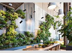 Living Green Walls 101 Their Benefits and How They're