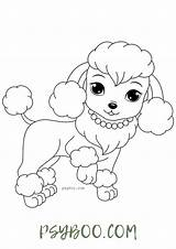 Poodle Coloring Charming Dog sketch template