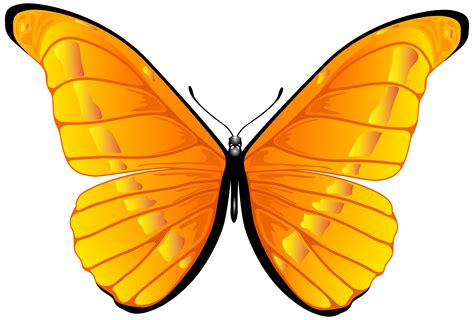 Butterfly Clip Butterfly Clipart Orange Butterfly Pencil And In Color