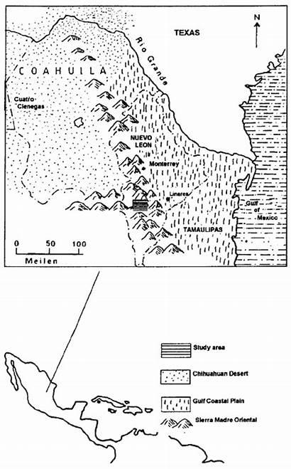 Madre Sierra Map Oriental Mexico Northeastern Gulf