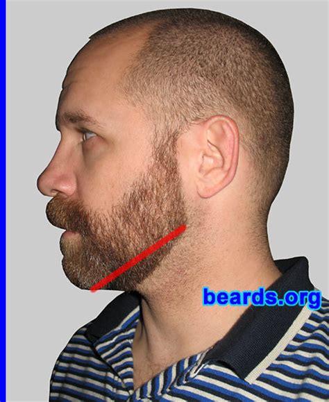 designing  neck    full beard   beards