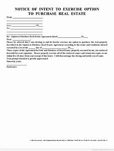 Real Estate Letter Of Intent Template Sample Printable Notice Of Intent To Exercise Option Form