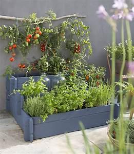 ide de jardin potager bordure en bambou petit carr de With delightful faire un jardin zen exterieur 6 la decoration exterieure avec un treillis de jardin