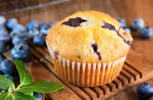 100 calorie blueberry muffins recipe sparkrecipes