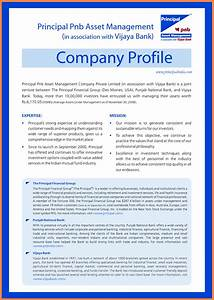Invoice Template On Word 5 Sample Company Profile Template Doc Company Letterhead