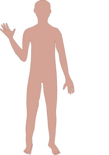 male body clip art  clkercom vector clip art