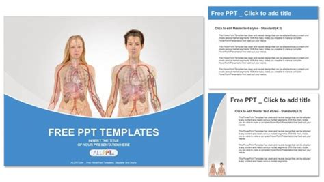 anterior view  human body powerpoint templates