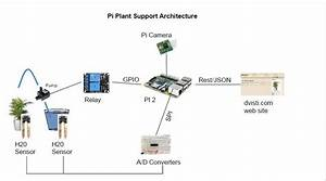 Automated Plant Watering Using Raspberry Pi