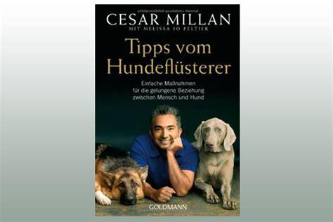 Tipps Vom Hundeflüsterer Cesar Millan