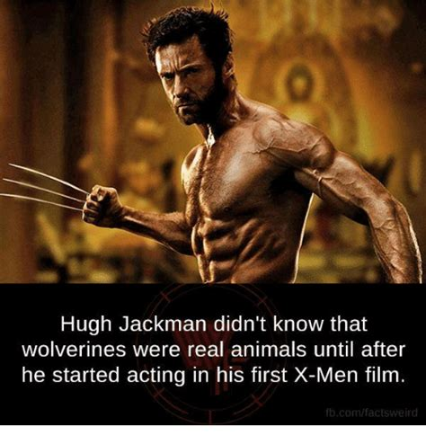 Wolverine Memes - 25 best memes about real anime real anime memes