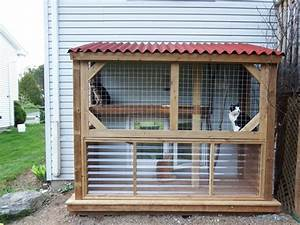 Enclos Exterieur Chat : our diy catio cat condo pinterest chats animal et enclos chat ~ Preciouscoupons.com Idées de Décoration