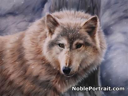 Portraits Animal Pet Portrait Noble Custom Wolves