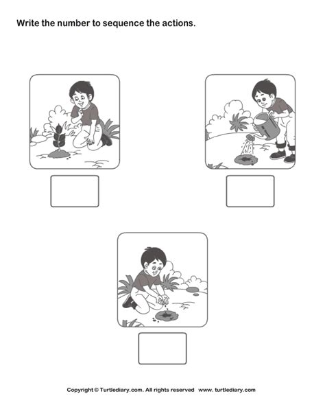 picture sequencing boy planting a tree worksheet turtle 909   picture sequencing boy planting a tree