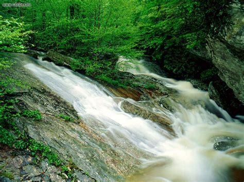 nature wilson creek pisgah national forest north carolina