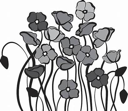 Remembrance Vector Clip Poppies Illustrations Graphics Illustration