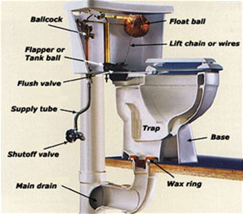 Toilet Repair  Plumbers Okc  Plumber Oklahoma City. Chiropractic Benefits Services. Intertherm Air Conditioning Az Storage Inns. Best Smartphone Within 15000. Heater In Car Not Working Cash Advance Dallas. New York Academy Of The Dramatic Arts. Thermal Conductivity Of Air City Fleet Cars. History Of Computer Animation. How To Invest In Apple Stocks