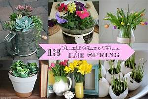 13 Beautiful Plant & Flowers Ideas for Spring - Nest of Posies