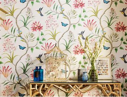 Sanderson Clementine Floral Wallpapers