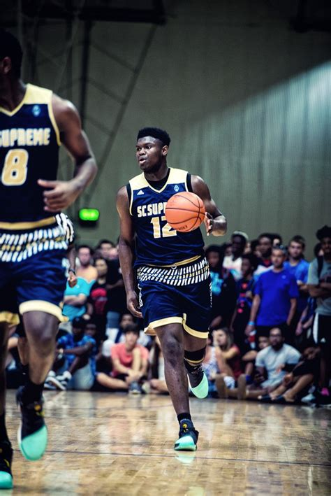 zion williamson hoopseen