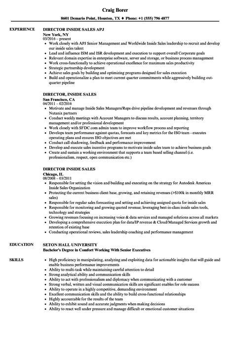 director  sales resume samples velvet jobs