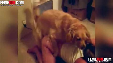 Lucky Shaggy Dog Unceremoniously Fucks Female Xxx Owner On