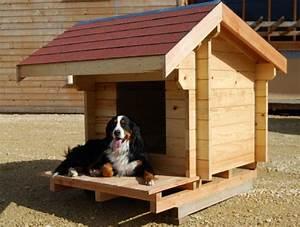 Cabane Pour Chien : niche moyenne animals and pets niche chien chien et ~ Melissatoandfro.com Idées de Décoration
