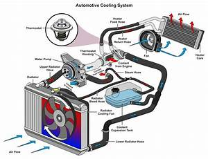 Car Cooling System  Climate Control For Your Car U2019s Engine